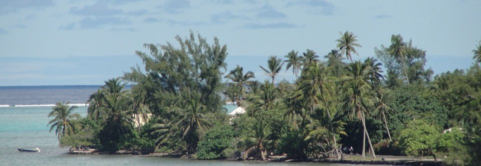 A holiday in a vacation: Oceania Odyssey Week 21